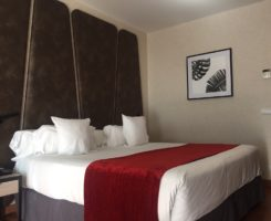 Ilunion Hotels Madrid and Malaga